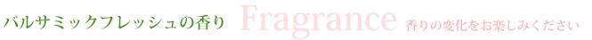 テラピーピュリファイング(6/S1、6/S2、6/P、6/F):バルサミックフレッシュの香り